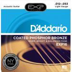 D'Addario EXP16