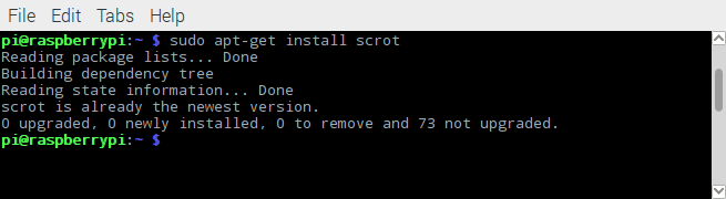 Capture Screen in Raspberry Pi or Raspbian with Scrot