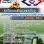 หนังสือสอบการรถไฟฟ้าขนส่งมวลชนแห่งประเทศไทย thumbnail 5