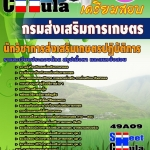 แนวข้อสอบข้าราชการ หนังสือเตรียมสอบ คุ่มือสอบนักวิชาการส่งเสริมเกษตรปฏิบัติการ กรมส่งเสริมการเกษตร