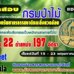 กรมป่าไม้ เปิดรับสมัครสอบเป็นพนักงานราชการ 197 อัตรา รับสมัครทางอินเทอร์เน็ต ตั้งแต่วันที่ 15 - 23 พฤษภาคม 2560