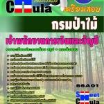 หนังสือเตรียมสอบ แนวข้อสอบข้าราชการ คุ่มือสอบเจ้าพนักงานการเงินและบัญชี กรมป่าไม้